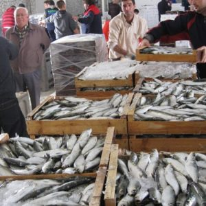 15/12/2010     Más de 7,7 millones de kilos de pescado y marisco se han subastado en las cinco lonjas pesqueras de Almería entre enero y agosto pasados, un volumen que supone casi un 80 por ciento más que en el mismo periodo del año pasado, según los datos de la Delegación de la Consejería de Agricultura, Pesca y Medio Ambiente. El valor de estas descargas, por su parte, ha ascendido a 15,7 millones de euros, un 6,7 por ciento más que en los ocho primeros meses de 2011 ALMERÍA ANDALUCÍA AUTONOMÍAS ECONOMIA ANDALUCÍA ESPAÑA EUROPA